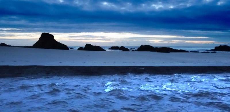 Gualala River Meets the Sea